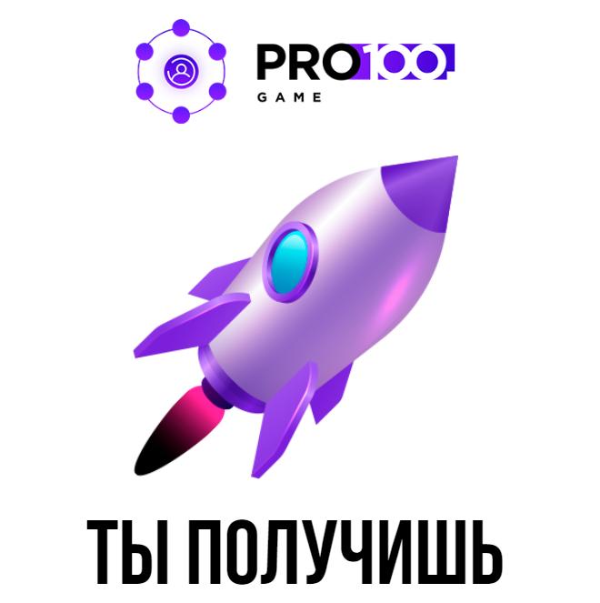 Инструкция по работе с Подписчиками Pro100Game + Права Перепродажи